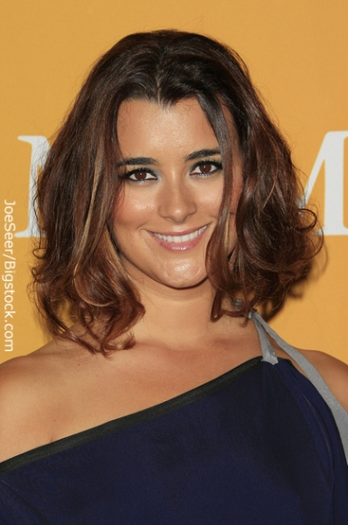 Cote de Pablo Hairstyles throughout the Career of a Celebrity